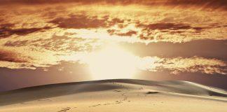abrigo do sol