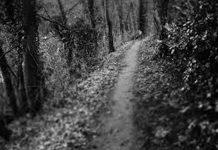 caminhos escuros
